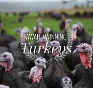 Award-winning-turkeys